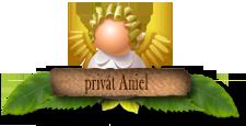 AnielPrivát